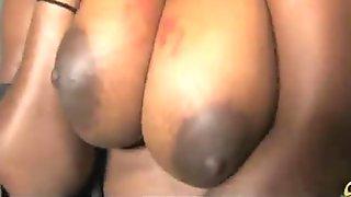 Black girl sucking their first big white cock 21